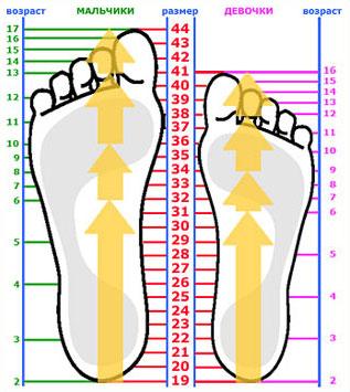 037ef97b73da Женская обувь больших размеров от 40 до 44 в Минске! размеры 40 41
