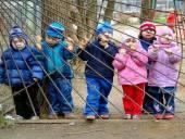 Детский садик: первый жизненный урок малыша