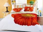 От чего зависит правильный выбор постельного белья