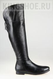 Женские сапоги Gloria - N.R. Артикул 1040709