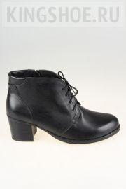 Женские ботинки Gloria - N.R. Артикул 8064