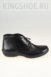 Женские ботинки Gloria - N.R. Артикул 2002
