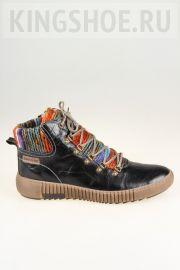 Женские ботинки Josef Seibel Артикул 84606-PL88102