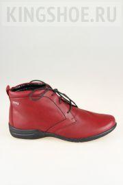 Женские ботинки Josef Seibel Артикул 92471-MI905380