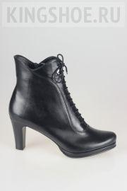 Женские ботинки Sateg Артикул 3156