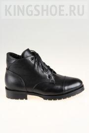 Женские ботинки Sateg Артикул 3182