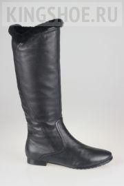 Женские сапоги Semilia Артикул SI0910-36A