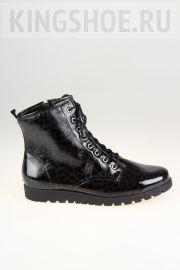 Женские ботинки Waldlaufer Артикул 549818-192007