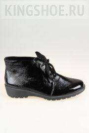 Женские ботинки Waldlaufer Артикул 675817-192007