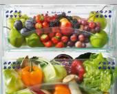Холодильники Liebherr делаем правильный выбор