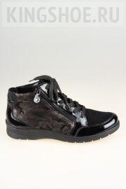 Женские ботинки Ara Артикул 41048/69