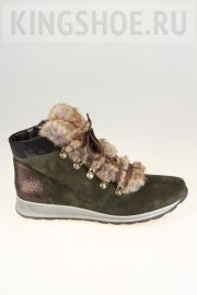 Женские ботинки Ara Артикул 44515/78