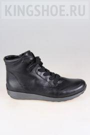 Женские ботинки Ara Артикул 44533/61