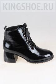 Женские ботинки Atwa Артикул 9213-BPO5