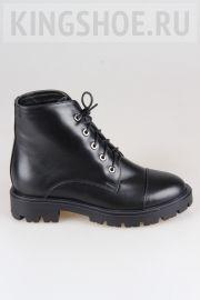 Женские ботинки Atwa Артикул 8201-PTR2