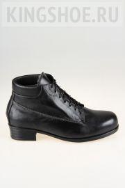 Женские ботинки Gloria - N.R. Артикул 8052