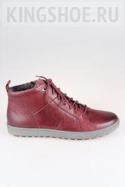 Женские ботинки Jana Артикул 25202-549
