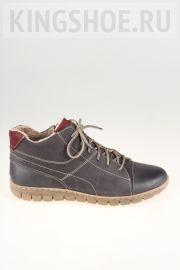 Женские ботинки Josef Seibel Артикул 93139-VL869151