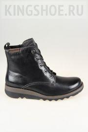 Женские ботинки Josef Seibel Артикул 82606-VL135101