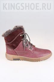 Женские ботинки Josef Seibel Артикул 84613-PL958410