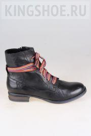 Женские ботинки Josef Seibel Артикул 76504-VL160100