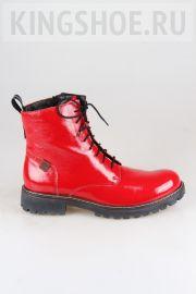 Женские ботинки Josef Seibel Артикул 85202-VL50400