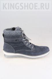 Женские ботинки Rieker Артикул R8477-14