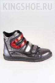 Женские ботинки Tais Артикул 19-N