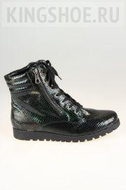 Женские ботинки Waldlaufer Артикул 549822-187079