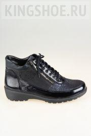 Женские ботинки Waldlaufer Артикул 675802-400386