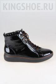 Женские ботинки Waldlaufer Артикул 763807-143001