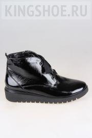Женские ботинки Waldlaufer Артикул 711801-143001