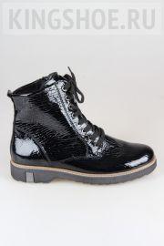 Женские ботинки Waldlaufer Артикул 683801-141194